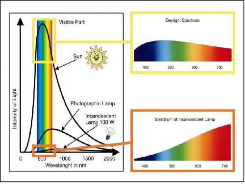 太陽光と水銀光のスペクトラム図